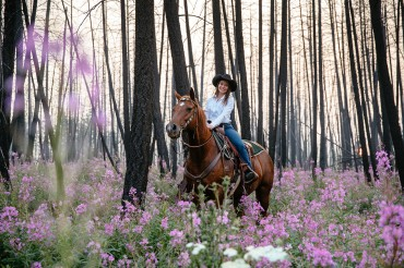 Riding in an enchanted forest amid the pink fireweed