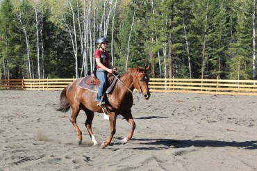 Practice your equestrian skills in the riding arena