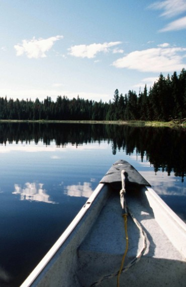 Canoeing during the Sacerd Waters & Ancient Forests Safari
